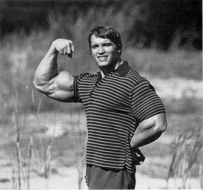 targeted muscle building arnold biceps peak